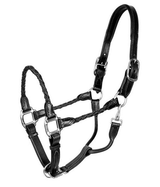 Perris Premium Leather Show Halter